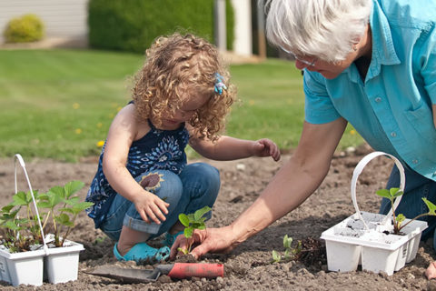 DIY Projects for Older Adults and Grandkids